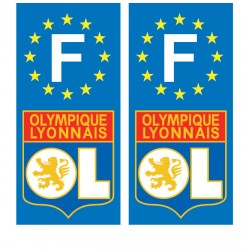 2 Stickers autocollant plaque d'immatriculation OL